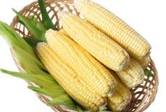 黄色玉米 库存照片
