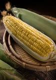 黄色玉米 免版税图库摄影