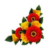 黄色玫瑰和红色百日菊属开花壁角安排 免版税库存图片