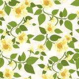 黄色玫瑰无缝的样式 免版税库存照片