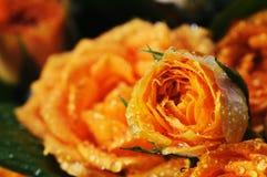 黄色玫瑰花束。 图库摄影