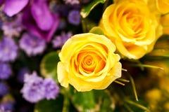 黄色玫瑰花束 库存照片