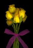 黄色玫瑰 图库摄影