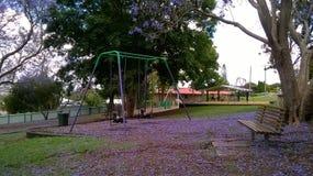 紫色瓣在公园 库存照片