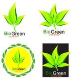 绿色生叶生物商标概念 免版税库存图片