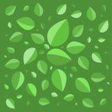 绿色生叶背景例证 库存图片