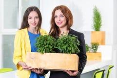 绿色生活 拿着有植物的两名可爱的年轻女实业家一个箱子istanding在现代办公室 环境 库存照片