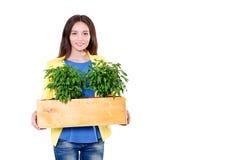 绿色生活 拿着有植物的可爱的年轻女实业家一个箱子隔绝在白色背景 环境 免版税库存图片