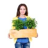 绿色生活 拿着有植物的可爱的年轻女实业家一个箱子隔绝在白色背景 环境 库存照片