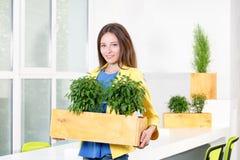 绿色生活 站立在现代顶楼办公室的可爱的年轻女实业家拿着有植物的一个箱子 环境 图库摄影
