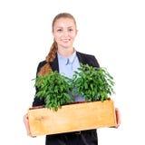 绿色生活 站立在现代顶楼办公室的可爱的年轻女实业家拿着有植物的一个箱子 环境 库存照片