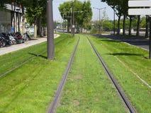 绿色电车轨道 库存图片