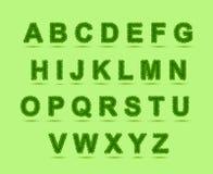 绿色留下字体,圣帕特里克天,三叶草字体, 库存照片