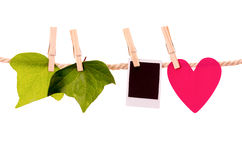 绿色留下心脏形状和立即照片垂悬 库存图片