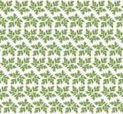 绿色留下装饰品样式传染媒介 向量例证