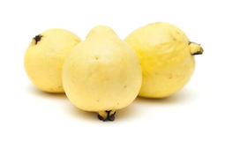 黄色番石榴果子 免版税库存图片