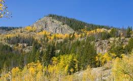 黄色白杨木和岩石小山 免版税库存图片