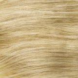 黄色白肤金发健康夹子在头发纹理 免版税库存照片