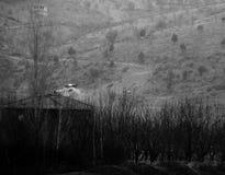 黑色白色 免版税图库摄影