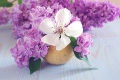 紫色白花春天装饰 免版税库存图片