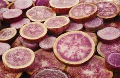 紫色白薯 免版税库存照片