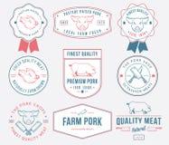色的优质猪肉 库存图片