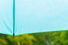 色的伞雨自然 库存图片