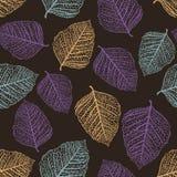色的叶子仿造无缝的向量 免版税库存图片