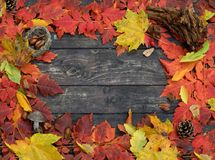 色的叶子秋天框架在自然木背景的 免版税库存图片