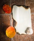 色的叶子秋天看板卡  免版税库存照片