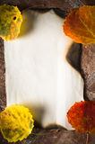 色的叶子秋天看板卡  免版税库存图片