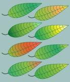 色的叶子 向量例证