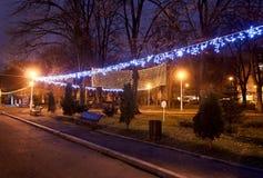 色的圣诞灯和装饰品在从布加勒斯特的一个公园 免版税库存照片