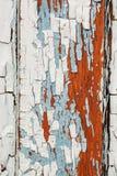 色的墙壁五颜六色的破裂的纹理没有重建的 有历史绘画的被放弃的房子 库存图片