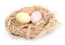 色的复活节彩蛋在嵌套 免版税库存图片