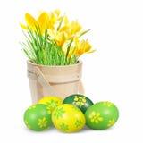 色的复活节彩蛋和番红花 免版税库存图片