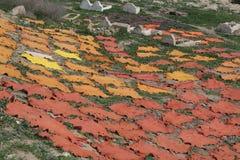 色的干燥菲斯皮革 免版税库存照片