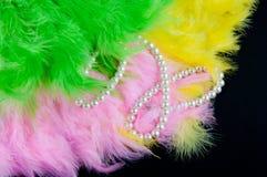 色的折叠的爱好者由羽毛和perl项链制成在黑背景 免版税库存图片