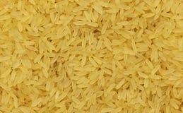 黄色的接近的米 免版税图库摄影