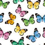 色的无缝的样式蝴蝶 库存照片