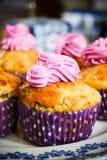 紫色的杯形蛋糕 库存图片