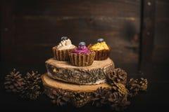 色的杯形蛋糕 免版税库存图片