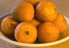 色的果子橙色棕榈树 免版税库存图片