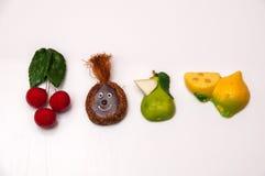 色的果子磁铁 免版税库存照片