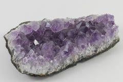 紫色的片断 库存图片