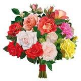 色的玫瑰花束  库存照片