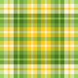 色的绿色格子花呢披肩春天黄色 免版税图库摄影
