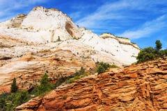 色的美丽创建小河横向多国家公园岩石令人难忘的美国zion 免版税图库摄影