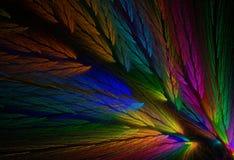 色的羽毛分数维鹦鹉 图库摄影
