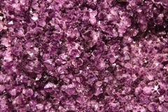 紫色的背景 库存图片